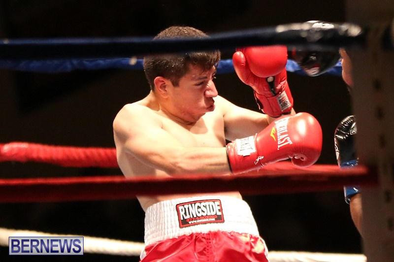 Nikki-Bascome-vs-Pilo-Reyes-Boxing-Match-Bermuda-November-8-2015-19