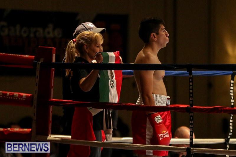 Nikki-Bascome-vs-Pilo-Reyes-Boxing-Match-Bermuda-November-8-2015-2