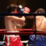 Nikki Bascome vs Pilo Reyes Boxing Match Bermuda, November 8 2015-22