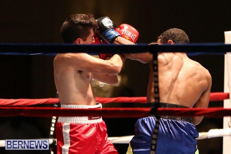 Nikki-Bascome-vs-Pilo-Reyes-Boxing-Match-Bermuda-November-8-2015-22