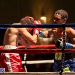 Nikki Bascome vs Pilo Reyes Boxing Match Bermuda, November 8 2015-29