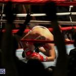 Nikki Bascome vs Pilo Reyes Boxing Match Bermuda, November 8 2015-34