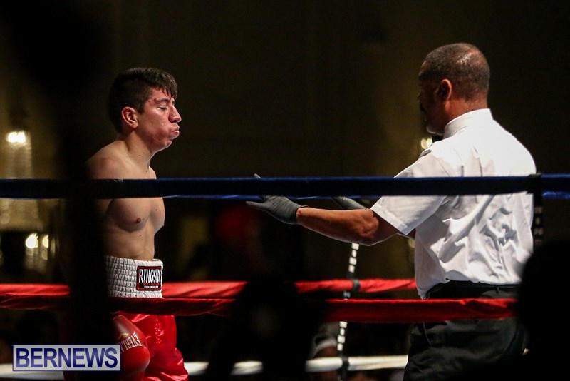 Nikki-Bascome-vs-Pilo-Reyes-Boxing-Match-Bermuda-November-8-2015-36