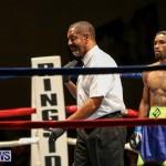 Nikki Bascome vs Pilo Reyes Boxing Match Bermuda, November 8 2015-38