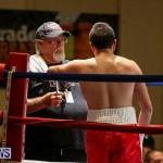 Nikki Bascome vs Pilo Reyes Boxing Match Bermuda, November 8 2015-44
