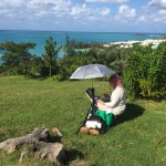 Plein Air Competition Bermuda Nov 24 2015 (11)