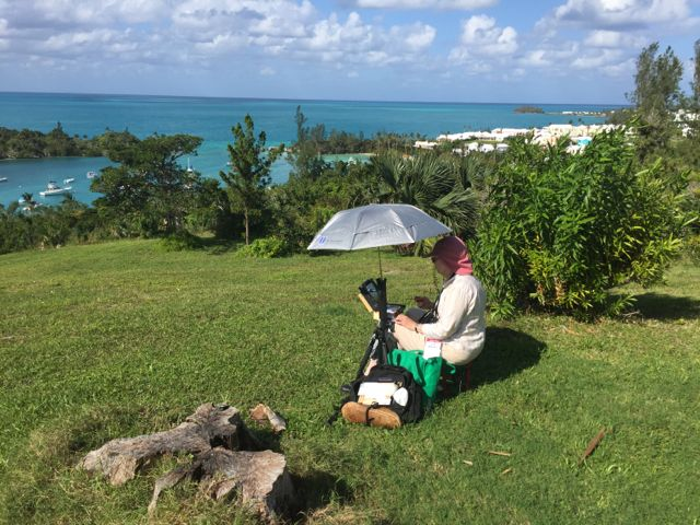 Plein-Air-Competition-Bermuda-Nov-24-2015-11