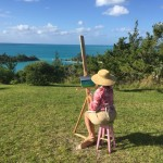 Plein Air Competition Bermuda Nov 24 2015 (16)