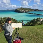 Plein Air Competition Bermuda Nov 24 2015 (26)