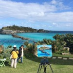 Plein Air Competition Bermuda Nov 24 2015 (31)