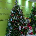 2015 Bermuda Christmas Trees in  Mall JM (11)
