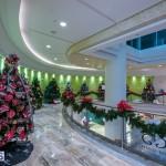 2015 Bermuda Christmas Trees in  Mall JM (7)