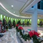 2015 Bermuda Christmas Trees in  Mall JM (8)