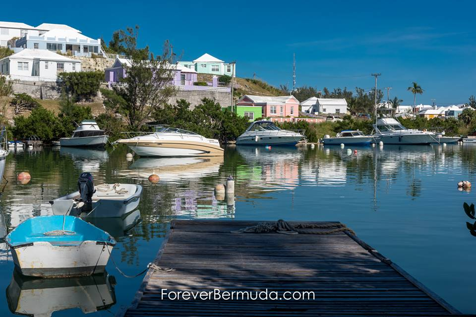 358 Winter in Bermuda Bermuda Generic Dec 2015