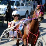Bermuda Harness Pony Racing Dec 2015 (1)