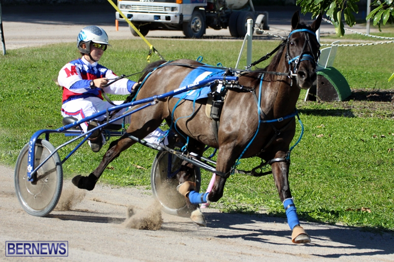 Bermuda-Harness-Pony-Racing-Dec-2015-10
