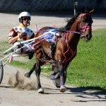 Bermuda Harness Pony Racing Dec 2015 (11)