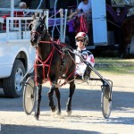 Bermuda Harness Pony Racing Dec 2015 (13)