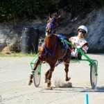 Bermuda Harness Pony Racing Dec 2015 (16)