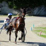 Bermuda Harness Pony Racing Dec 2015 (18)