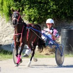 Bermuda Harness Pony Racing Dec 2015 (2)