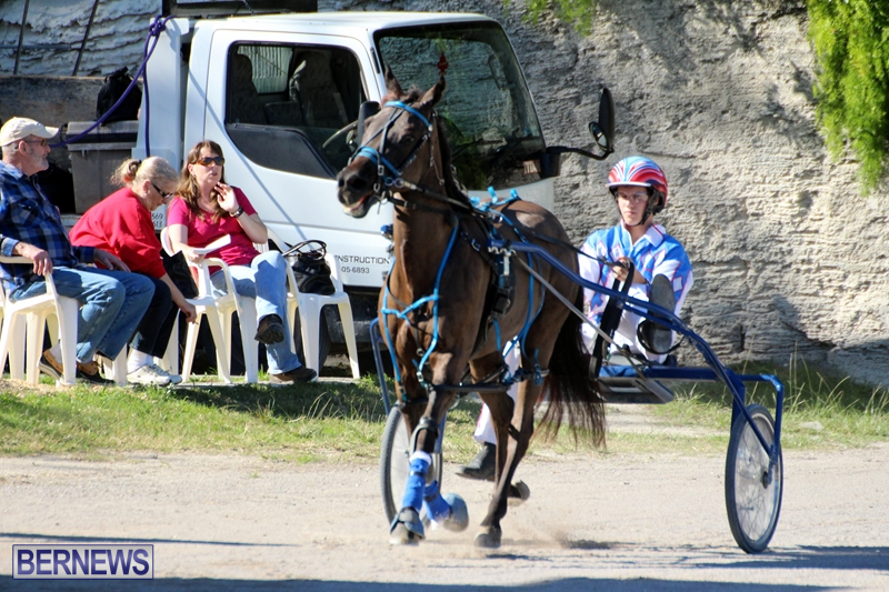 Bermuda-Harness-Pony-Racing-Dec-2015-3