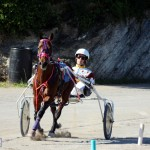 Bermuda Harness Pony Racing Dec 2015 (8)