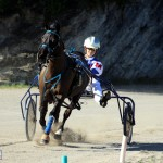 Bermuda Harness Pony Racing Dec 2015 (9)