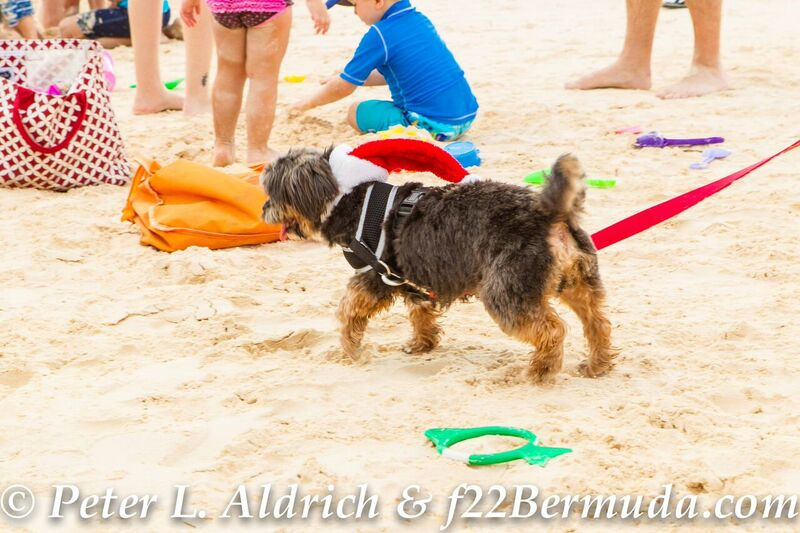 Christmas-Day-Bermuda-Dec-25-2015-2-3