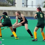 Hockey Bermuda Dec 2 2015 (12)