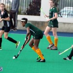 Hockey Bermuda Dec 2 2015 (13)