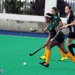 Hockey Bermuda Dec 2 2015 (14)