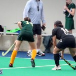 Hockey Bermuda Dec 2 2015 (2)