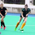 Hockey Bermuda Dec 2 2015 (6)