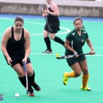 Hockey Bermuda Dec 2 2015 (7)
