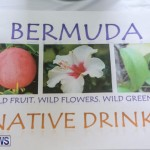 Home-Grown Alternatives Crafts Show Bermuda, December 5 2015-99