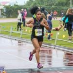 10K Race Bermuda Marathon Weekend, January 16 2016-231