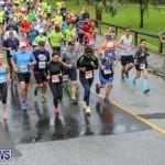 10K Race Bermuda Marathon Weekend, January 16 2016-36