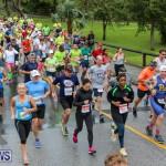10K Race Bermuda Marathon Weekend, January 16 2016-37