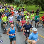 10K Race Bermuda Marathon Weekend, January 16 2016-38