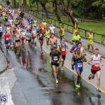 10K Race Bermuda Marathon Weekend, January 16 2016-4