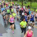10K Race Bermuda Marathon Weekend, January 16 2016-47