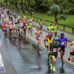 10K Race Bermuda Marathon Weekend, January 16 2016-7