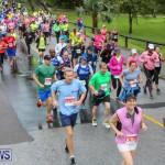 10K Race Bermuda Marathon Weekend, January 16 2016-75