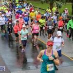 10K Race Bermuda Marathon Weekend, January 16 2016-80