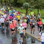 10K Race Bermuda Marathon Weekend, January 16 2016-81
