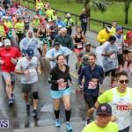 10K Race Bermuda Marathon Weekend, January 16 2016-94