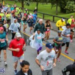 10K Race Bermuda Marathon Weekend, January 16 2016-98
