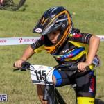 Cyclocross Racing Bermuda, January 10 2016-5