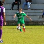 Football Bermuda, January 1 2016 (19)